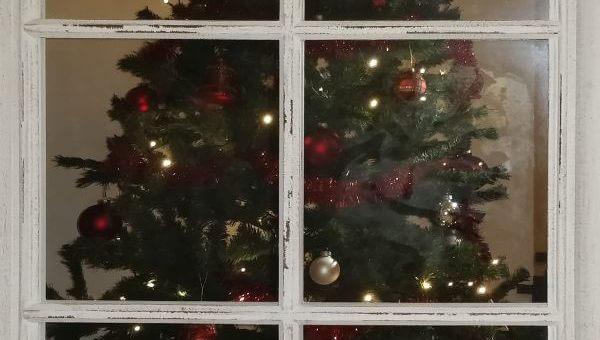 Weihnachtsüberraschung